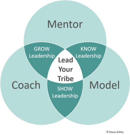 Mentor-Model-Coach Light