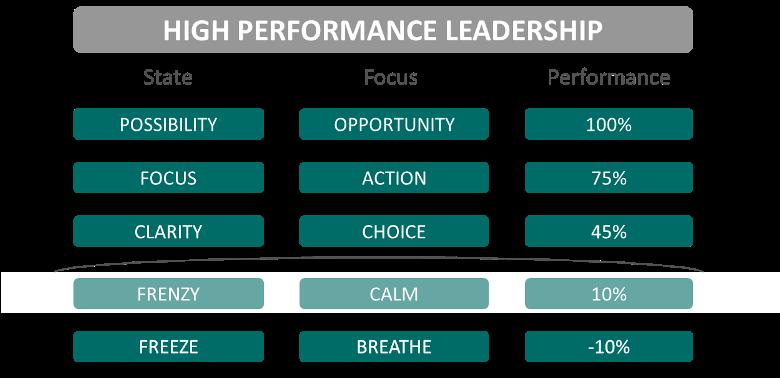 Stacey Ashley High Performance Leadership Ladder