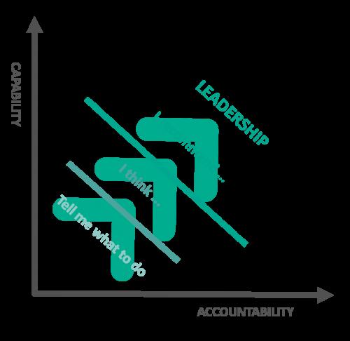 capability and accountability